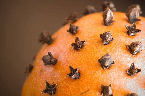 orange-pomander