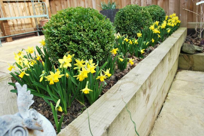 Garden in March 2