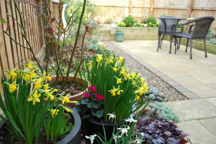 Garden in March3