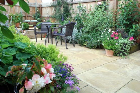 July Garden1