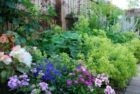 July Garden7
