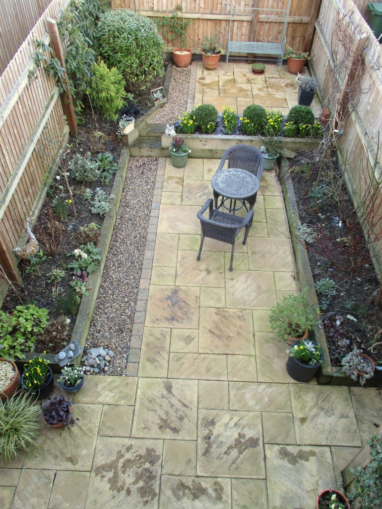Garden in Feb